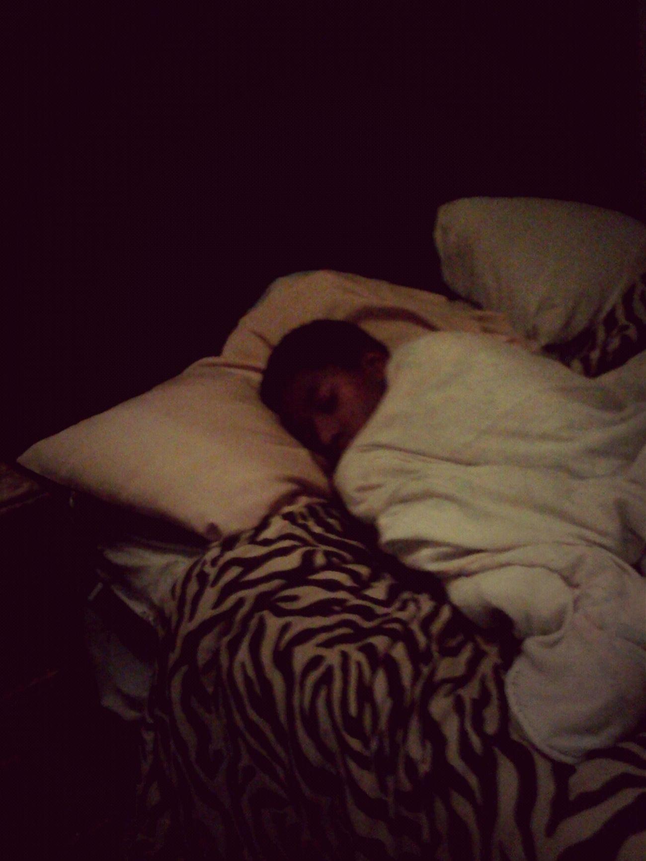 Mee Sleep