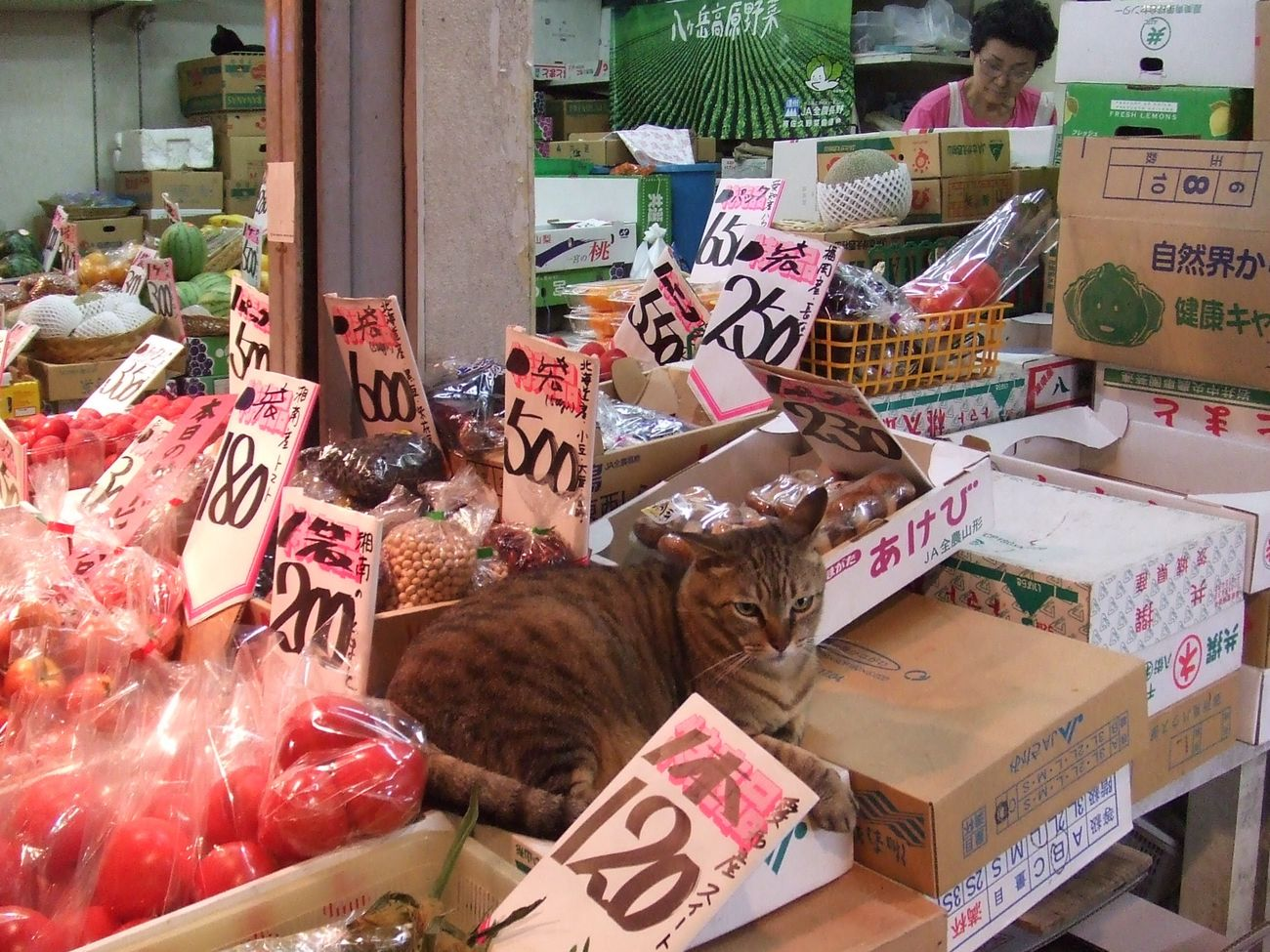 営業部長 2 sales manager cat Market Retail  Market Stall For Sale Price Tag Day Food Store Number Sales Manager One Animal Animal Themes Cat Cat♡ Greengrocer Owner What Do You Want? In Japan