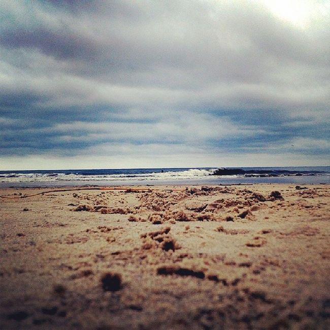 Atlantida Beach Uruguay Nature