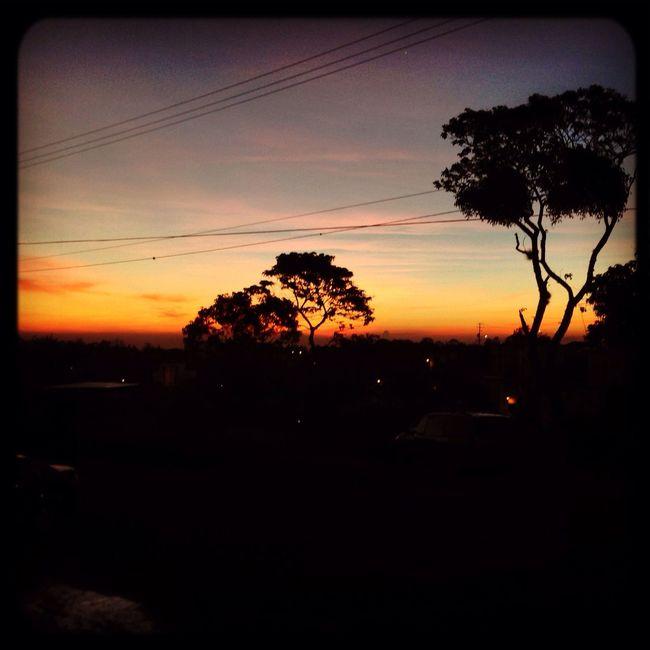 Enjoying Life Taking Photos Landscape IPhone5