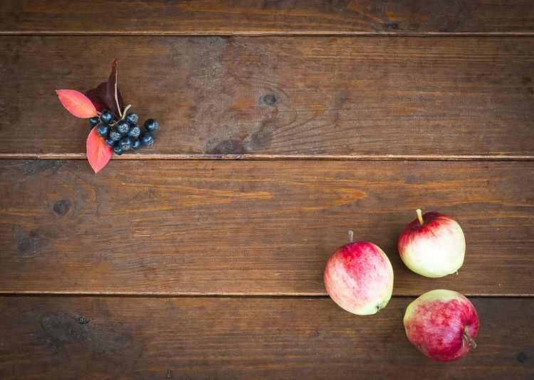Apples Autumn Back To School Background Black Rowan Close-up Concept Copyspace Floor Three Wall Wood