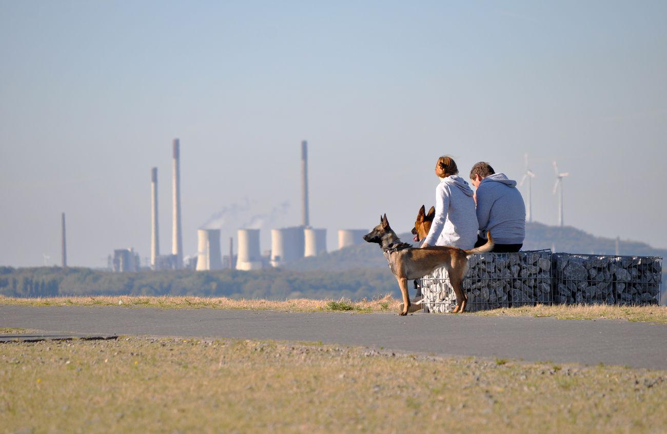 Autumn Dogs Halden Horizontal Outdoors Ruhrgebiet Sky Two People