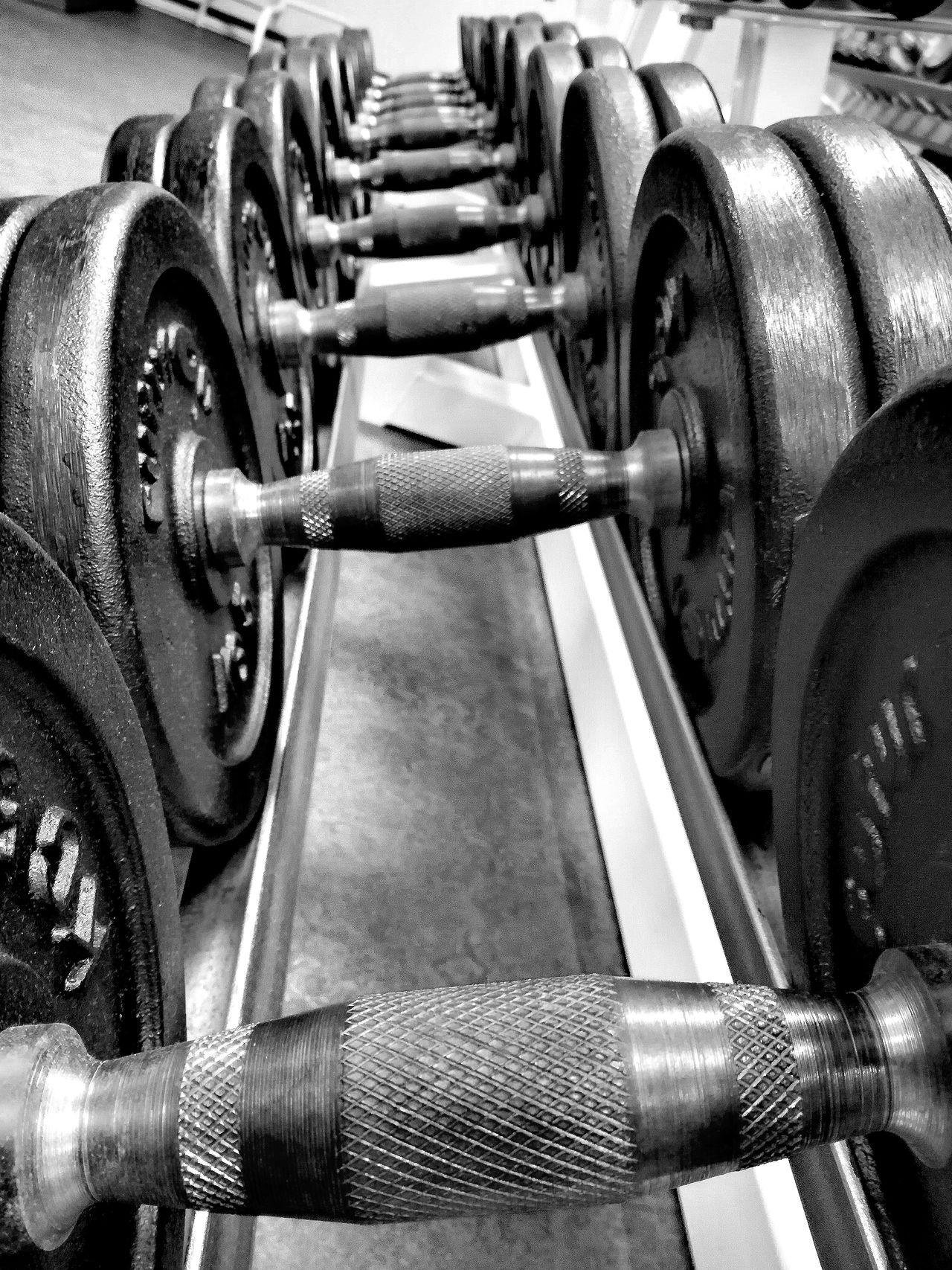 Dumbells Fitness Gym Sport Weights Power Blackandwhite Indoors  Workout Training