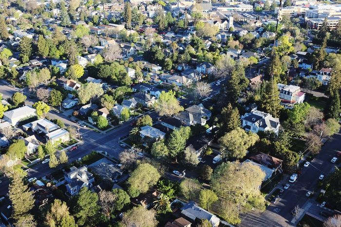 Beautifully Organized Trees Green Aerial View Aerial Shot Urban Aerial Photography Green Trees Napa Valley California Flying High Flying High. Flying High