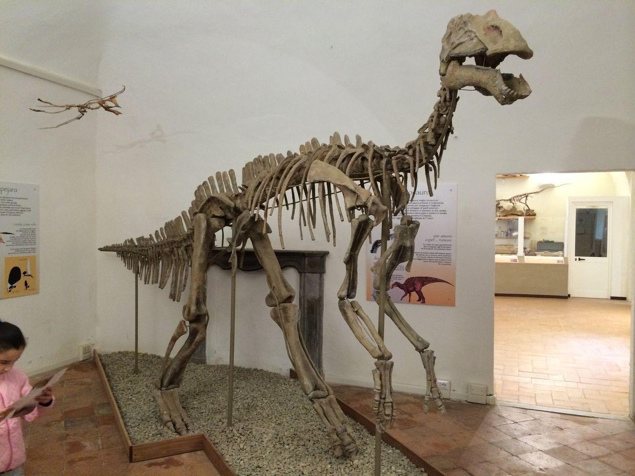 Dinosaurs Dinosauri Storia