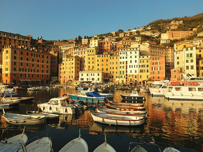 City Moored Travel Destinations Apartment Nautical Vessel Architecture Business Finance And Industry Outdoors Building Exterior No People Water Cityscape Harbor Day Camogli Italia Liguria Sky Refraction Sand Landscape Sea And Sky Orange Color Reflection Tranquility Sunset