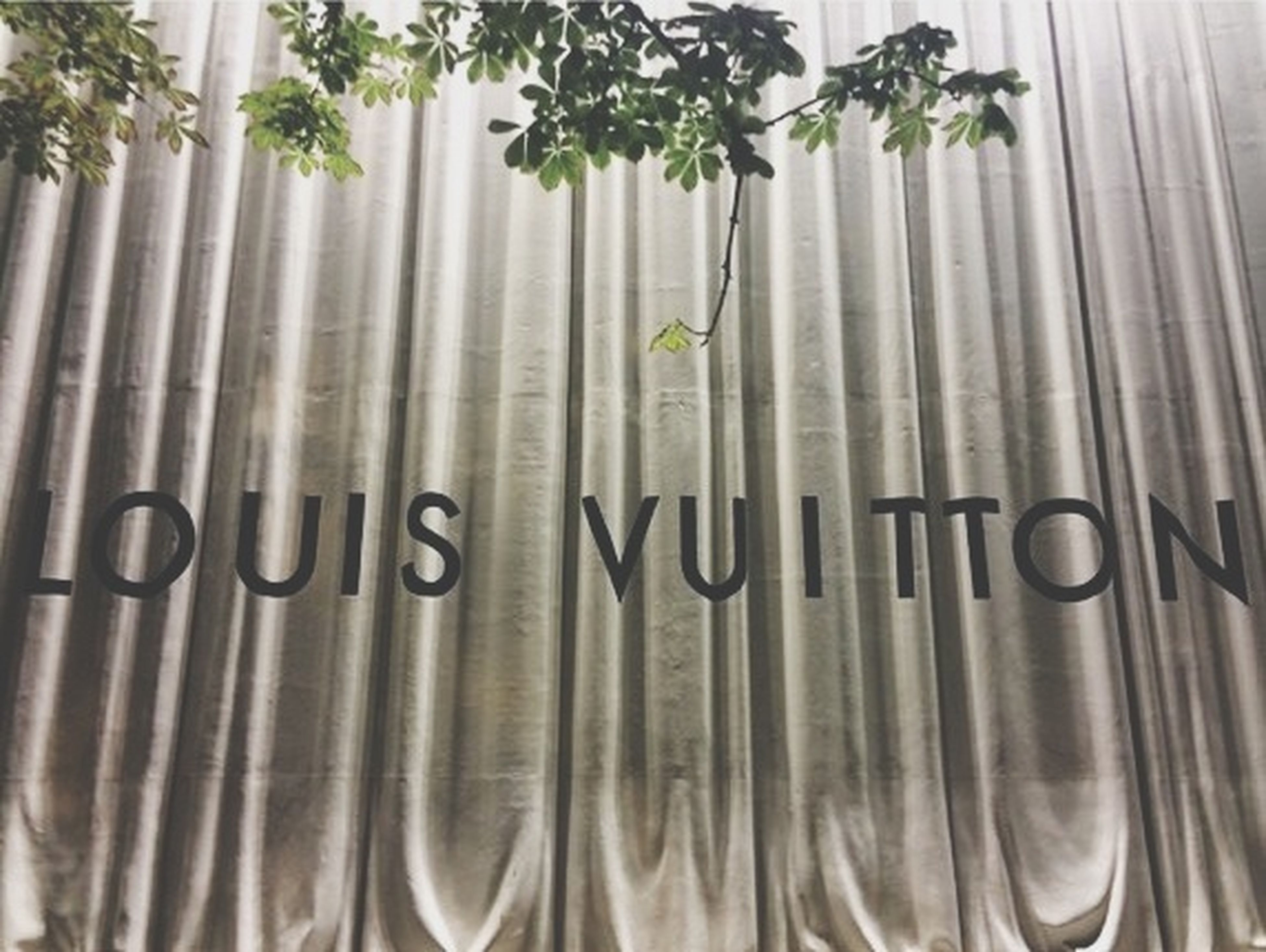 indoors, close-up, hanging, in a row, side by side, still life, no people, growth, metal, day, plant, green color, arrangement, repetition, large group of objects, curtain, order, white color, abundance, glass - material