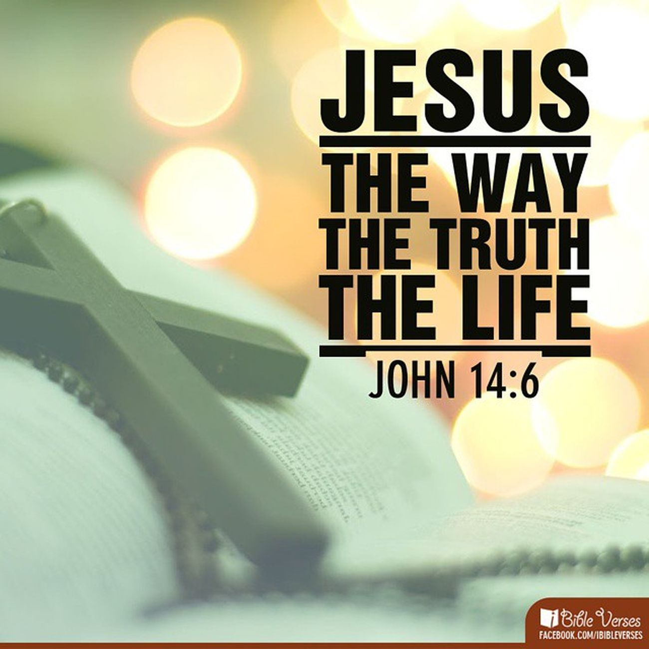 ???the only way ?Jesusisking