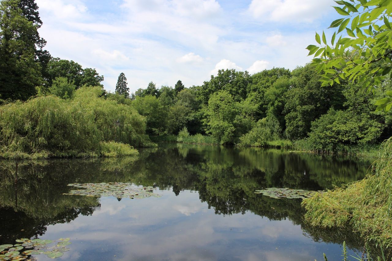 Tree Water Nature Green Color Reflection Sky Growth Tranquility Lake Scenics Outdoors Beauty In Nature Day No People Tranquil Scene Reflection Lake Radley Lakes Canonphotography
