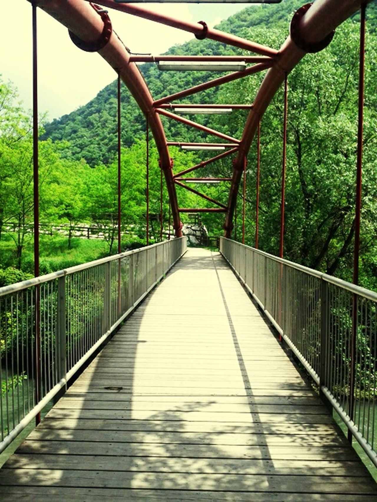 The Adventure Handbook Bridging On The Path Running Bridges Never Give Up Straightforward EyeEm Nature Lover