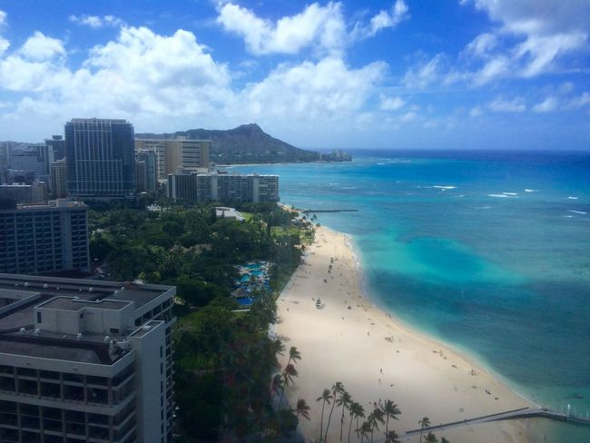 Beach Hawaii Horizon Over Water Ocean Palm Tree Sea Vacations Waikiki Beach