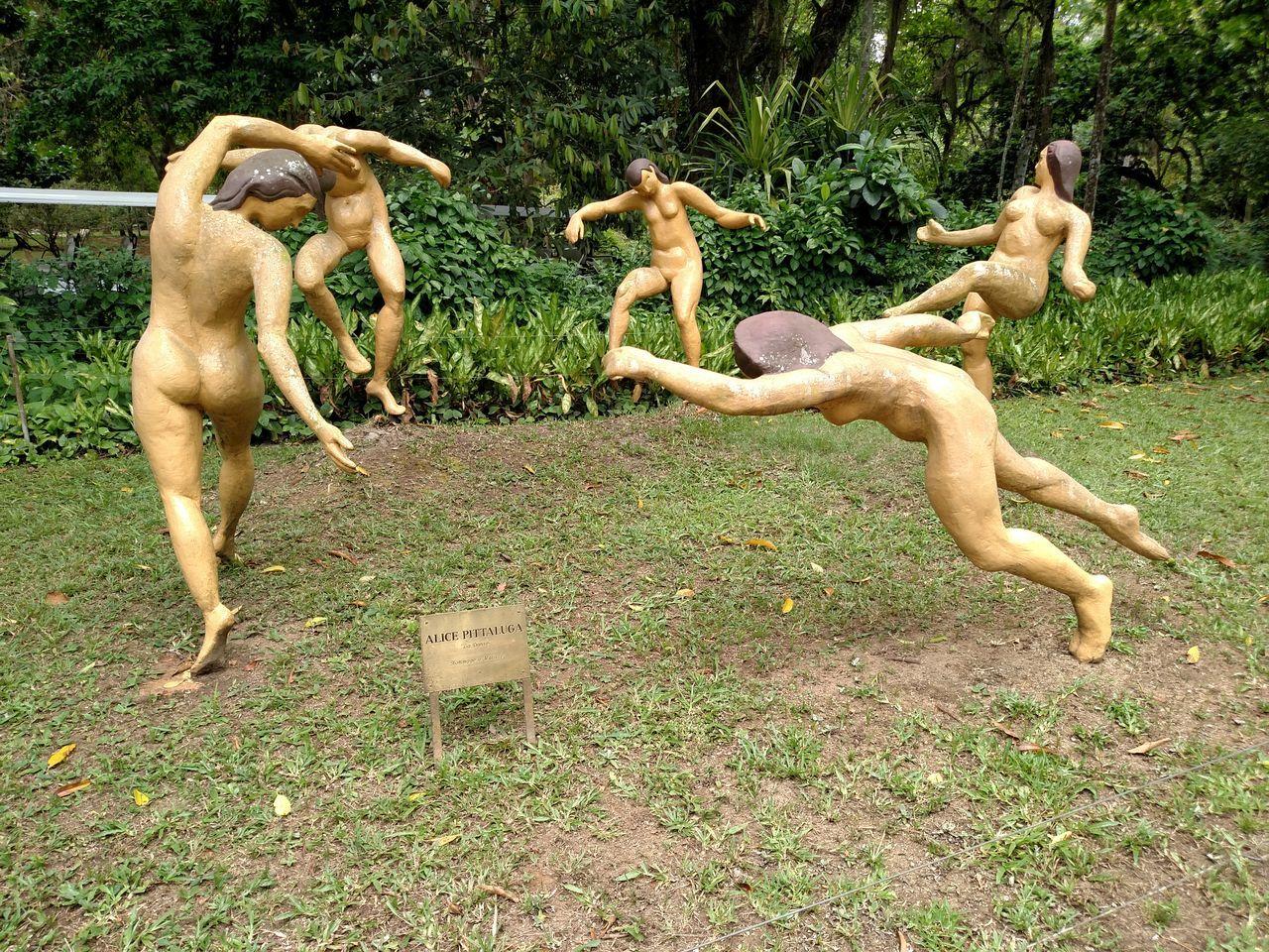 Showcase: January Jardim Botânico - Rio De Janeiro Ledanse