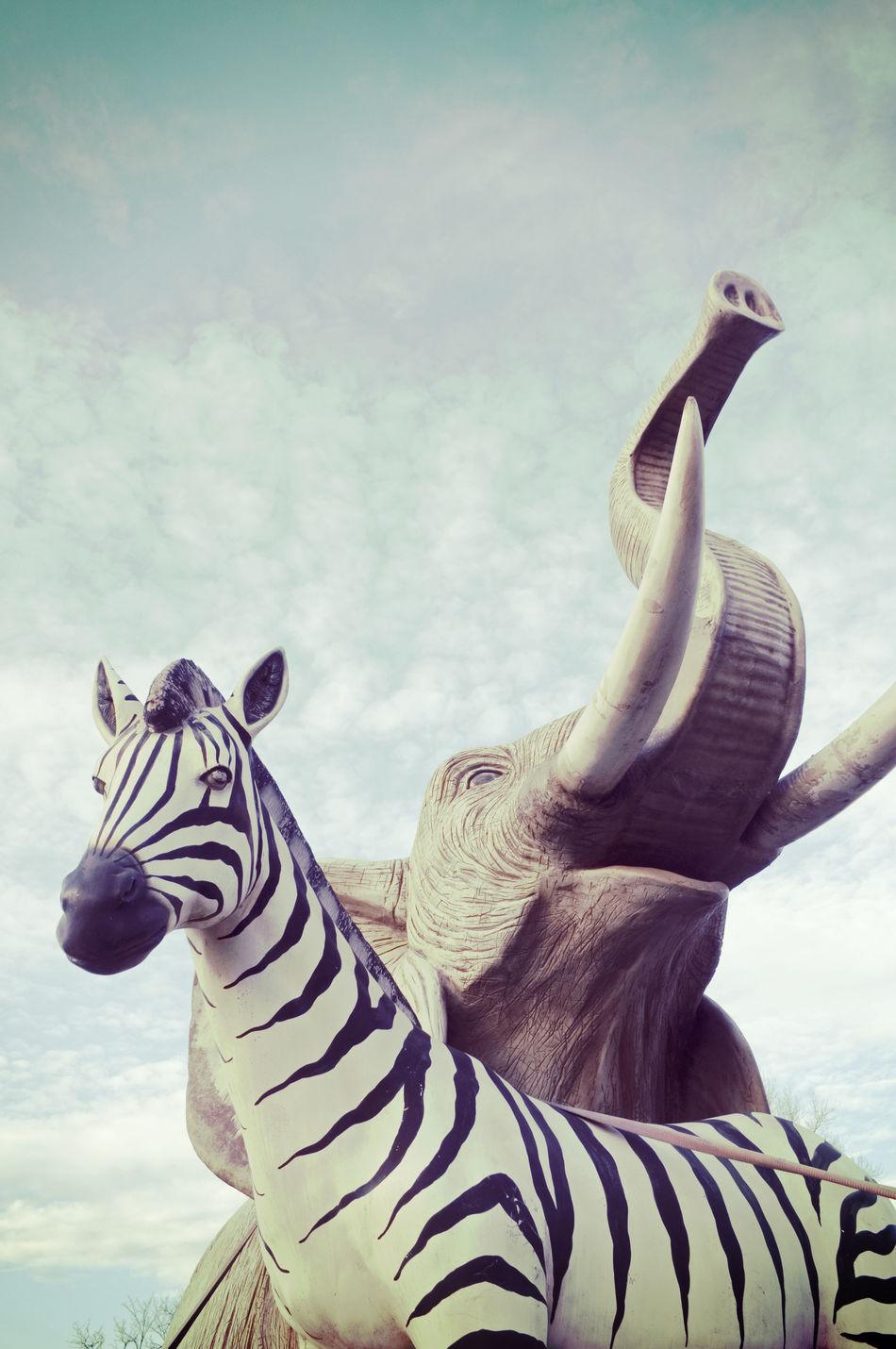 elephant and zebra fiberglass sculptures Africa African Animals Copy Elephant Fake Imitation Likeness No People Outdoors Replica  Reproduction Sculpture Sky Symbols Together Unreal Vertical Zebra