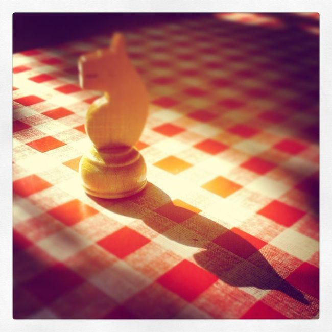 Horse Checkers Shax