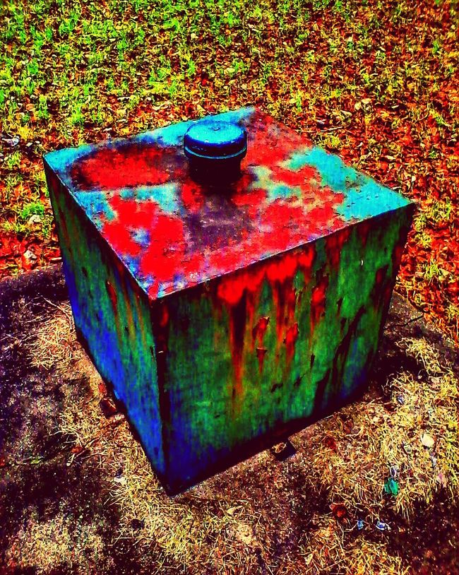 Showcase: February Rusty box. Stillwater Rust From Above  Stillwater Minnesota Warmth Saturated Saturated Color Green Green Green Green!  Built Structure Structure Textured  Metal Rusty Metal Distrortion Nature Porn Dark Distortion Photography Minnesota💙 Grass Nature Electrical Box Metallic Beautiful