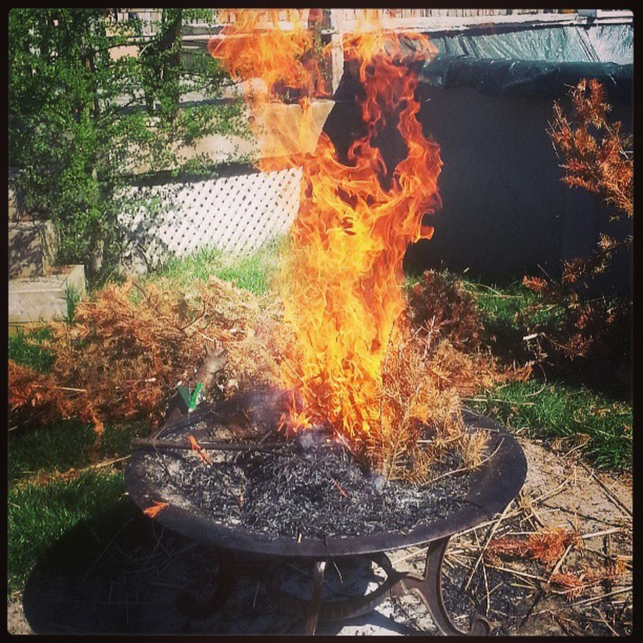 Daytime Fire BURNBABYBURN so happy for this weather!!!