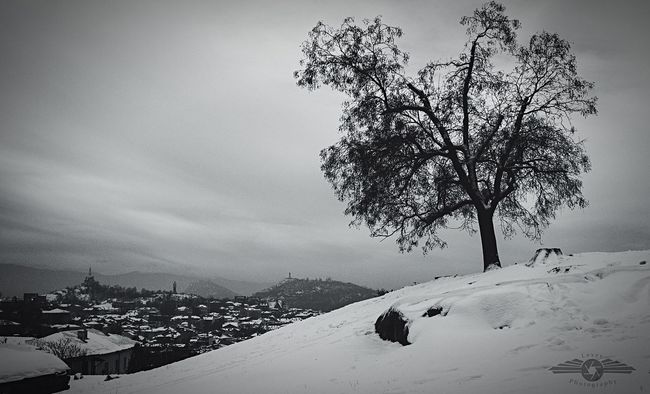 Snowy Landscape Landscape Old Plovdiv Plovdiv, Bulgaria B&w Photography B&W Collections Beautiful Urban First Eyeem Photo EyeEm Best Shots EyeEm Nature Lover Light And Shadow Beauty In Nature Nikon Nikonphotography Nikon D3100 Respect For The Good Taste Young Photographer Eye4photography  EyeEm Best Edits Art From My Point Of View Snowcase:January