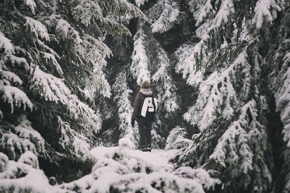 Beautiful stock photos of weihnachtsbaum,  25-29 Years,  Adventure,  Beauty In Nature,  Cold Temperature