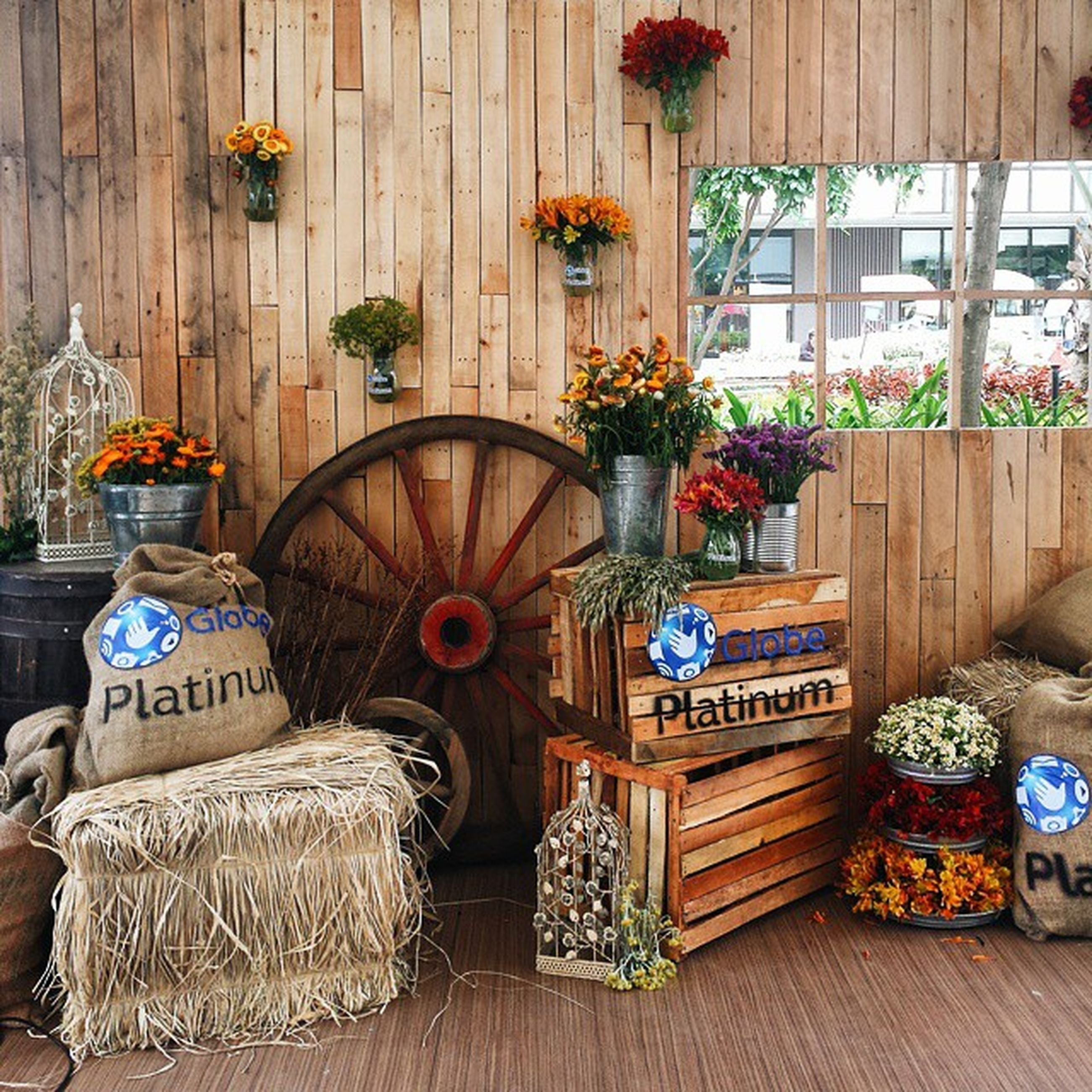 wood - material, flower, potted plant, text, variation, wooden, decoration, plant, arrangement, wall - building feature, non-western script, choice, hanging, no people, multi colored, indoors, table, large group of objects, day, communication