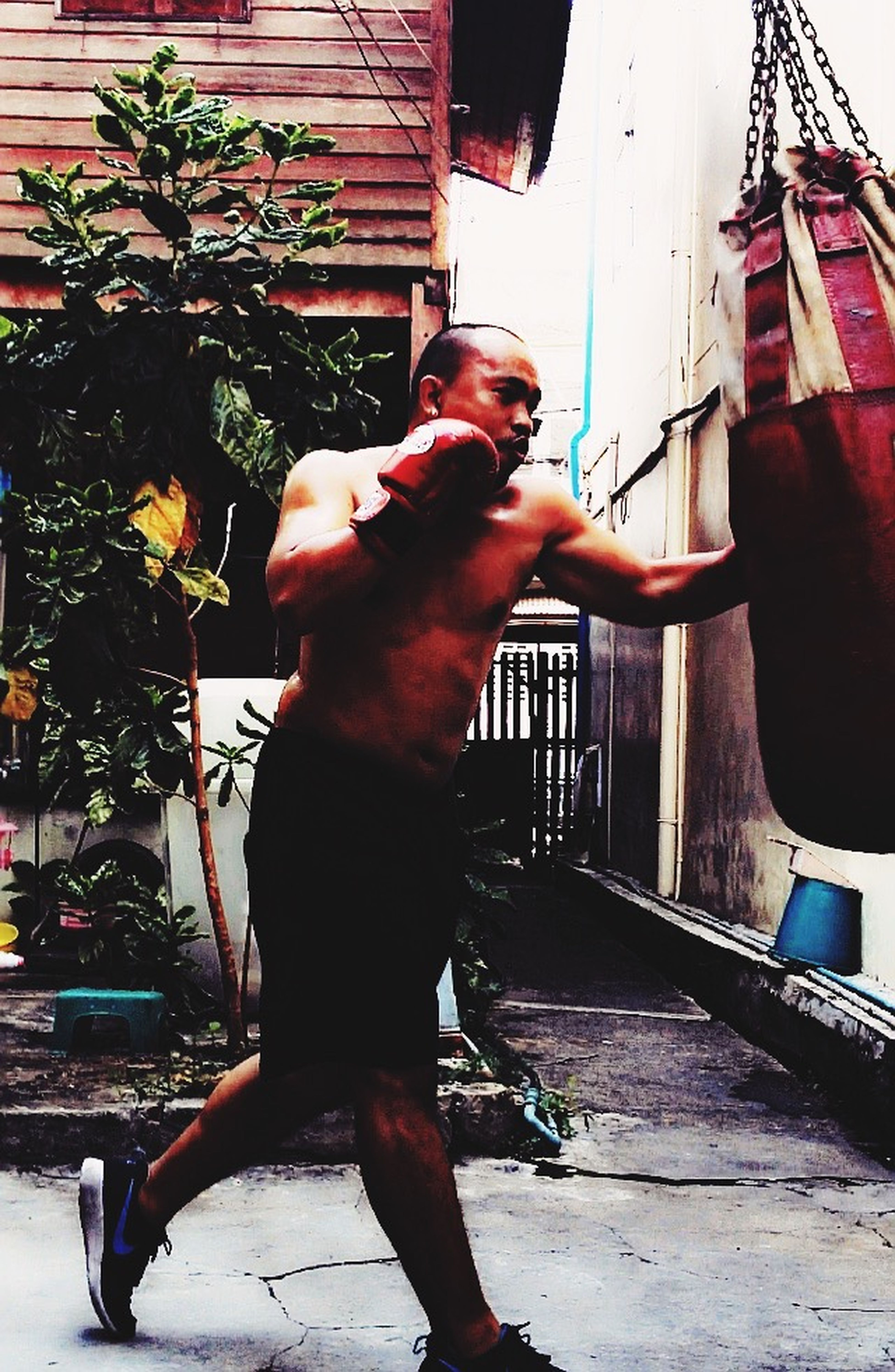 My Hobby Boxing Workout