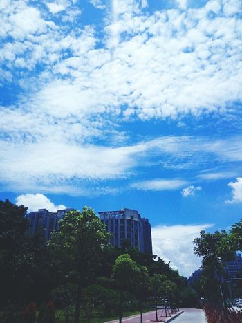 First Eyeem Photo Blue Sky Sunny Day Sunny Happy White Clouds White Clouds And Blue Sky China Urban Life Trees Green Side Walk Bike Lane Street Street Photography White Buildings White Building