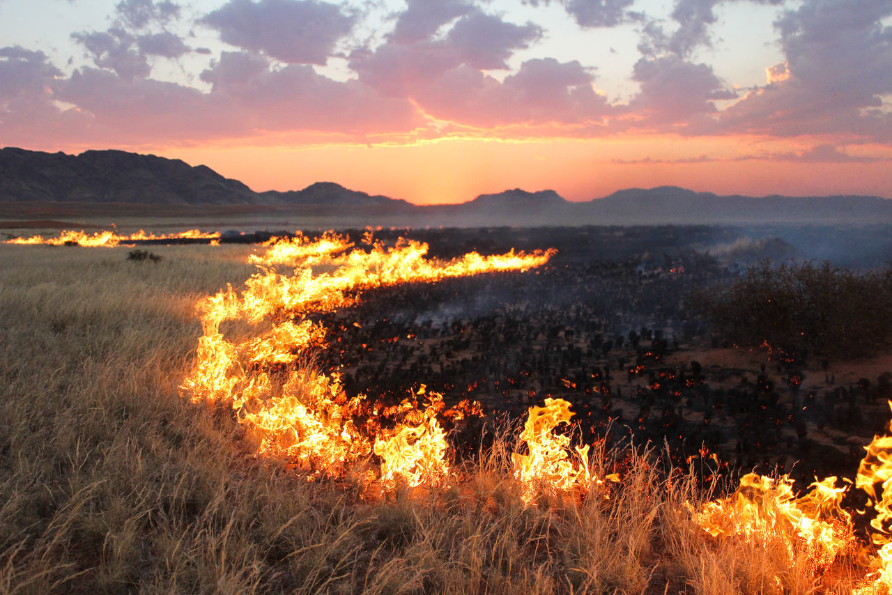 Bushfire Fire Kanaan Majestic Mountain Namibia No People Orange Color Outdoors Sky Sun Sunset Action Veldbrandt