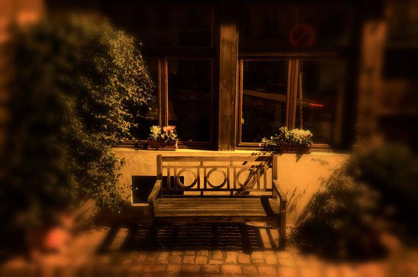 Architecture Beauty In Nature Blurred Effect Building Exterior Built Structure Flower Growth Illuminated Nature Night No People Outdoors Plant Potted Plant Table Tree