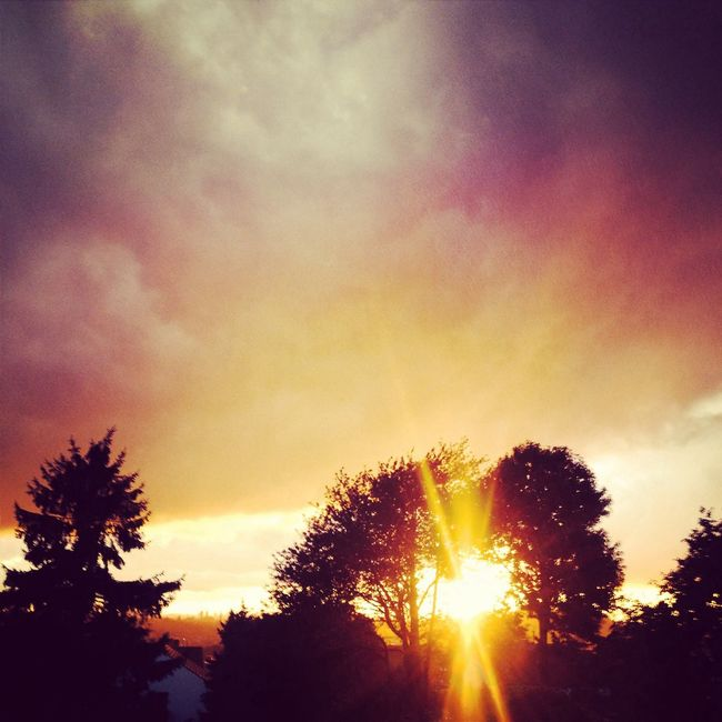 Den Regen sieht man nicht aber es sah wunderschön aus Sun Goes Down Enjoying The Sun Check This Out Nature Watching