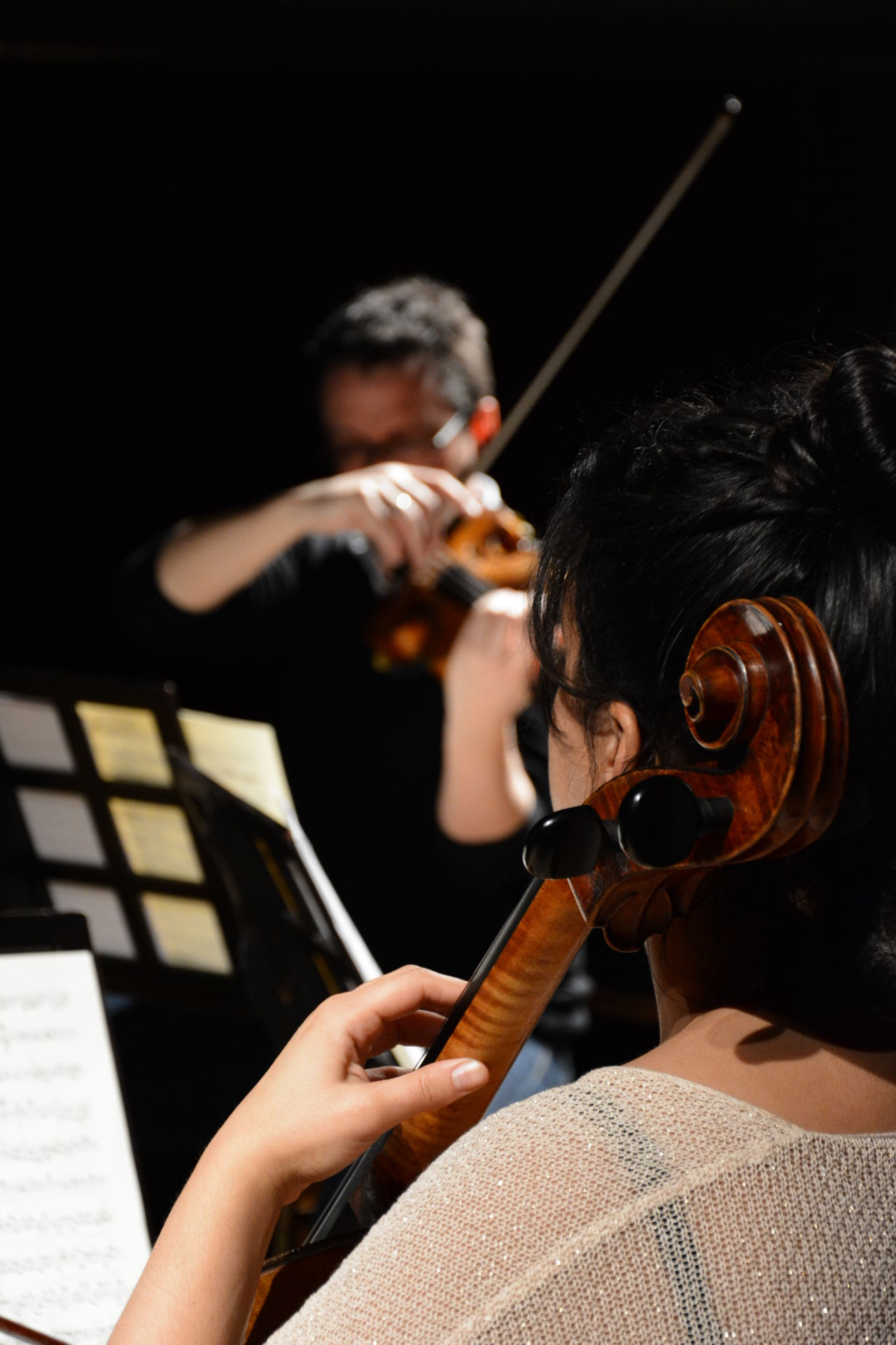 musicians playing the Cello and Violin together Arm Cello Classical Classical Music Duet Female Instrument Instruments Live Live Music Male Music Music Is My Life Musician Musicians Performance Performance Art Performing Photo Photography Stock Stockphoto Teamwork Violin Violinist