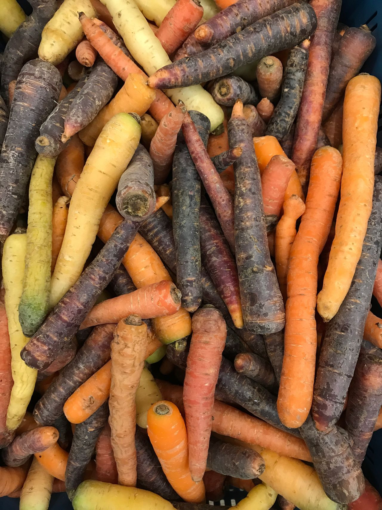 Carrot Vegetable Food And Drink Root Vegetable Large Group Of Objects Still Life Orange Color Abundance Healthy Eating High Angle View Food Backgrounds Freshness Retail  No People Full Frame Market Indoors  Raw Potato Multi Colored