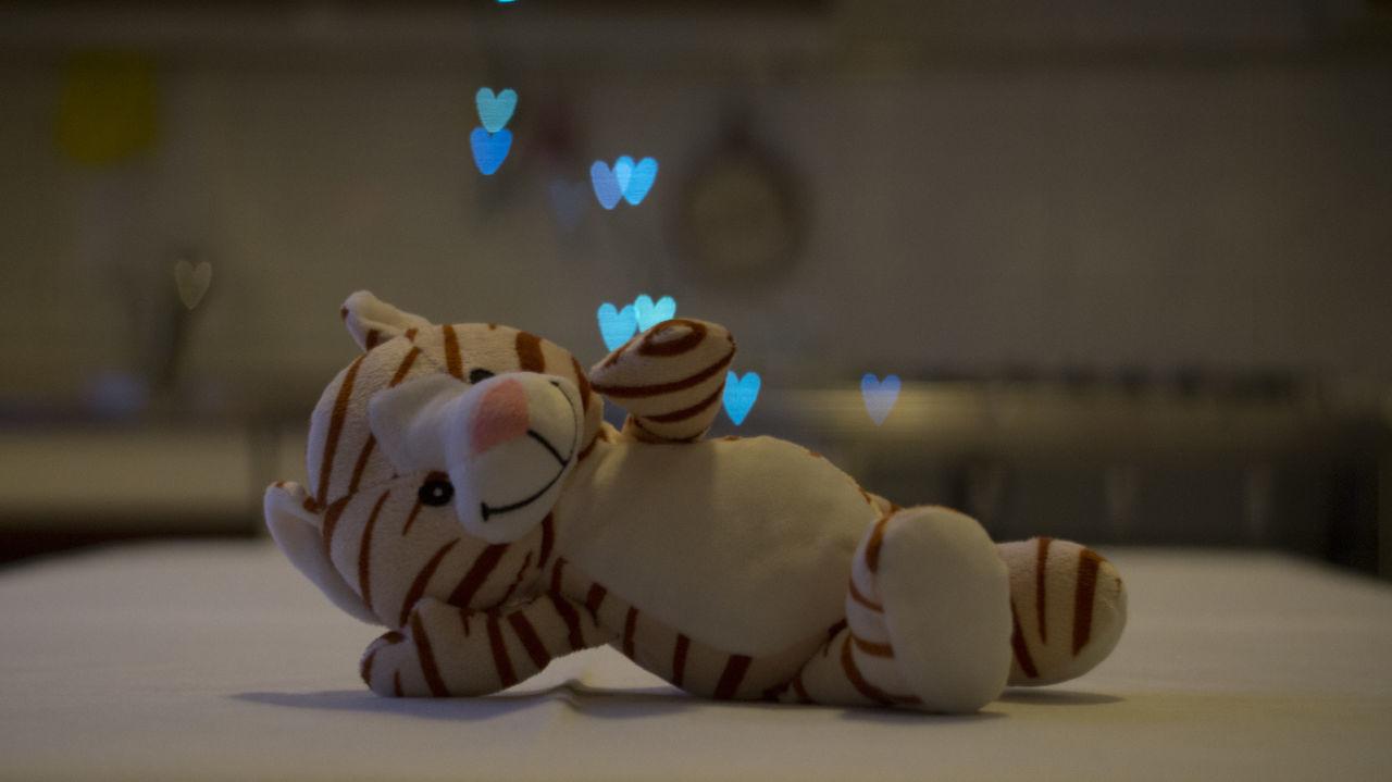 Amare Amore Bokeh Bokeh Background Bokeh Love Bokeh Photography Boken Heart Boken Light Boken Lights Boken Love Boken Photo Heart Heart In Love Heart In The Sky Indoors  Love Lovely Muppet No People San Valentin San Valentine's Day Small Tiger True Love