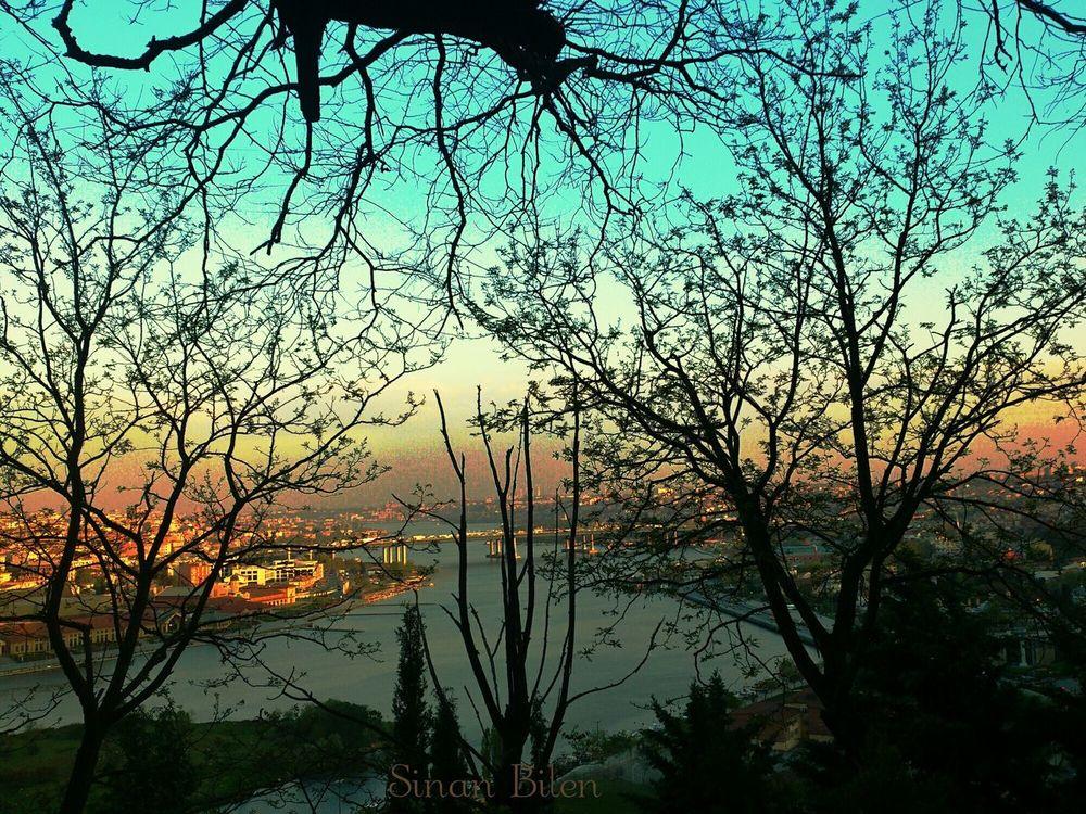 Beautifulistanbul Istanbullove Şampiyon BEŞİKTAŞ Beautiful Beautiful View Photooftheday Sonyxperiaphotography Landscape Photographer Sinanbilen