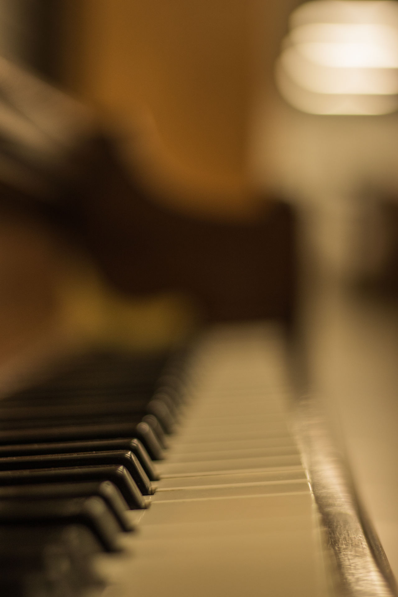 shallow depth of field studio shot of piano keys Arts Culture And Entertainment Blackandwhite Bokeh Bokeh Photography Bokehlicious Close-up Day Dof Dof_addicts Dofaddicts Howard Roberts Indoors  Keys Light And Shadow Music Musical Instrument No People Piano Piano Key Piano Keys Shallow Depth Of Field Studio Photography Studio Shot