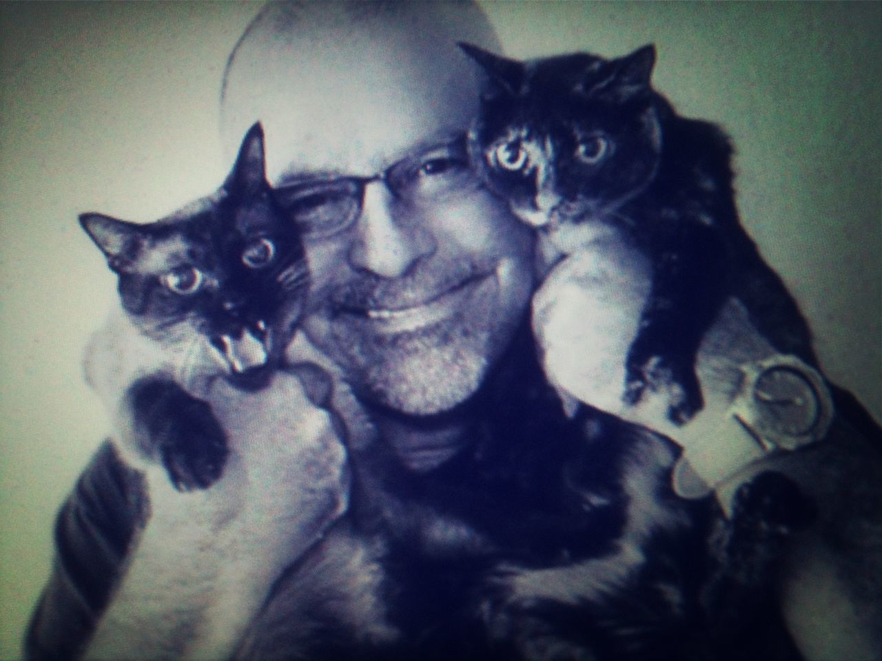 Close-up portrait of a happy man with cats