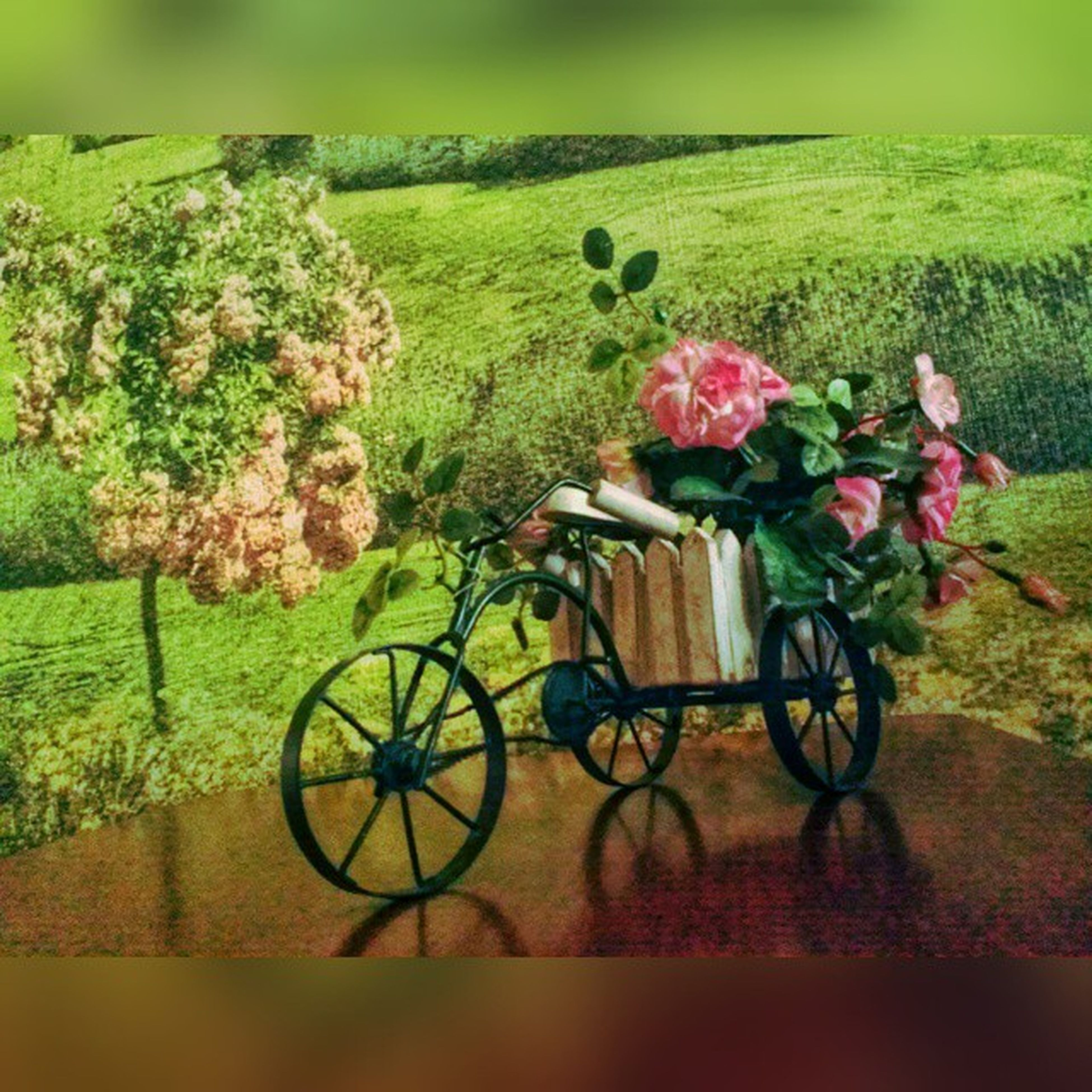 bicycle, flower, land vehicle, plant, growth, transportation, grass, mode of transport, nature, green color, beauty in nature, parked, parking, stationary, field, no people, tranquility, day, outdoors, park - man made space