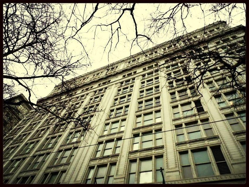 Architecture Portland Oregon Senior Project
