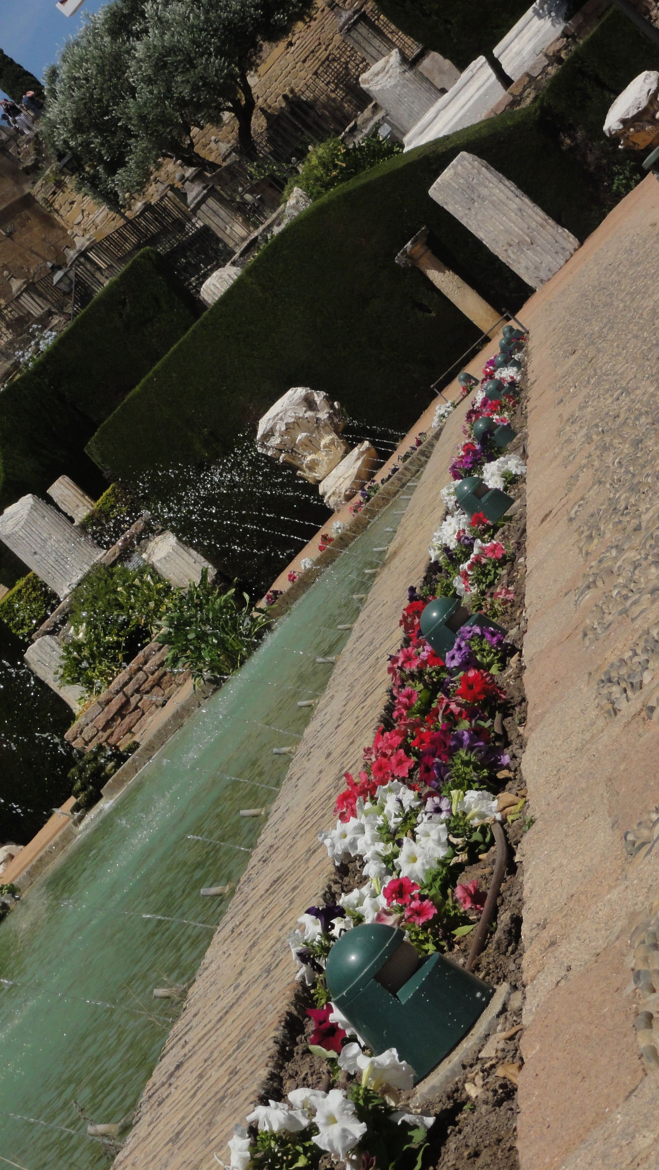The alcazar of Cordoba Alcazar Beauty In Nature Córdoba Flower Fountain High Angle View Nature Outdoors Plant Summer Water
