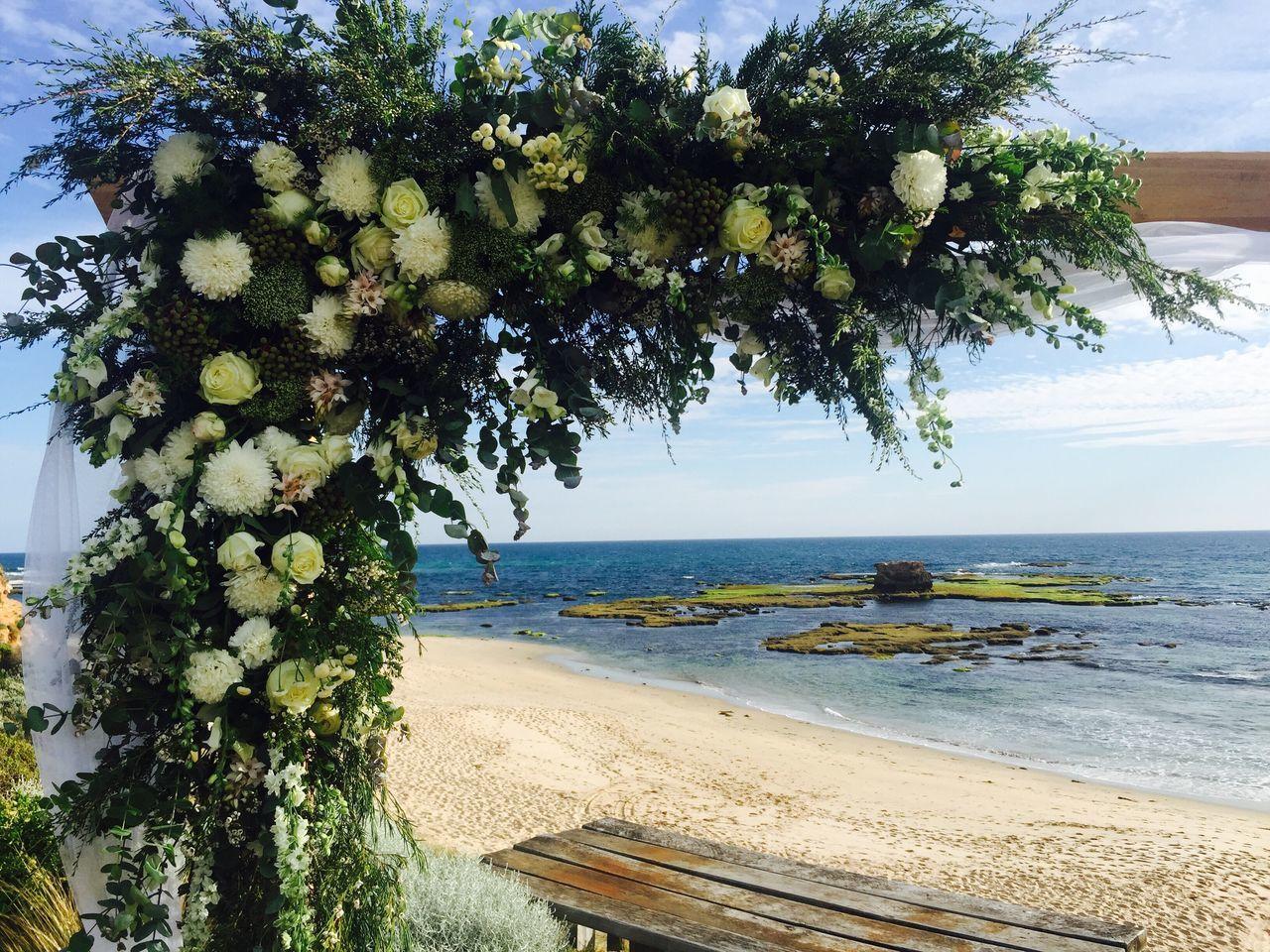 Beachwedding Beach Backdrop Beach Wedding Flowers Roses Flowers  Blue Sky