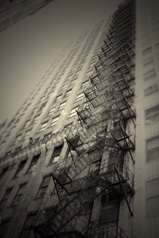 Architecture by Rocio