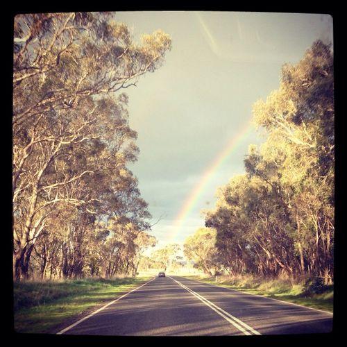 Following The Rainbow