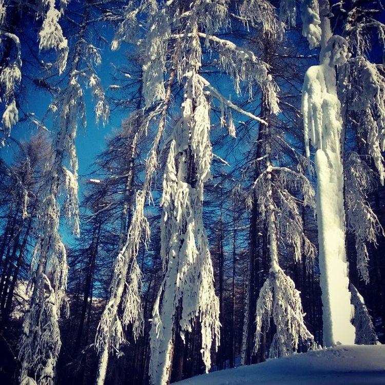 Snow Skiday Ice Sauzedoulx