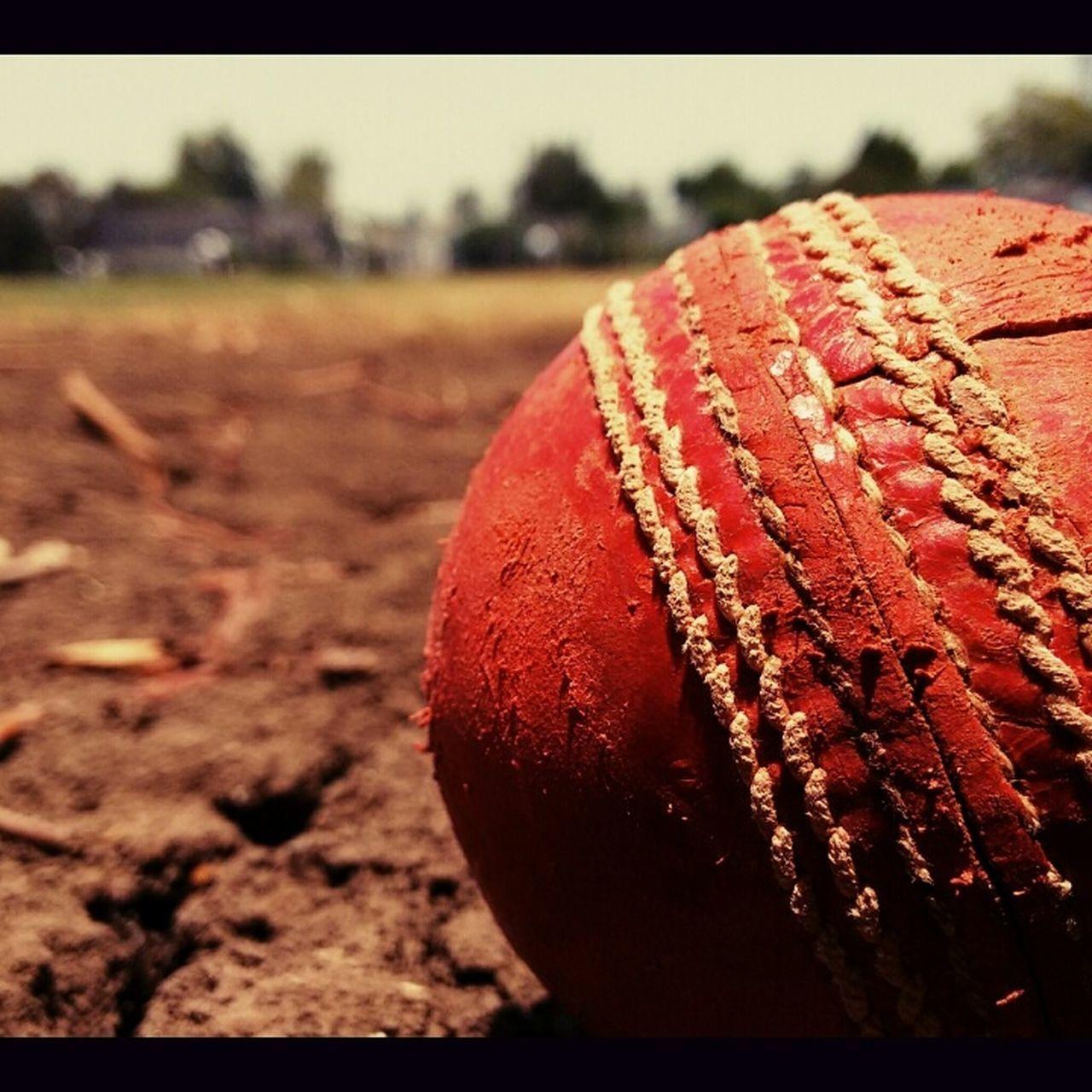 season of cricket vivo ipl 2017!!!! Blurred Background Close-up Cricket Field Focus On Foreground Ipl 2017 Outdoors Photography Season Of Cricekt