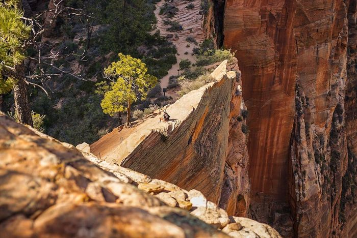 Perspectives On Nature Rock - Object Rock Formation Geology Nature Physical Geography No People Beauty In Nature Cliff Day Landscape Outdoors Scenics Cave Travel Destinations Mountain Rock Face Tree