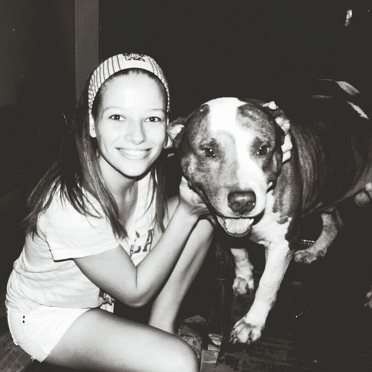 Animal Animal Love B&w Love
