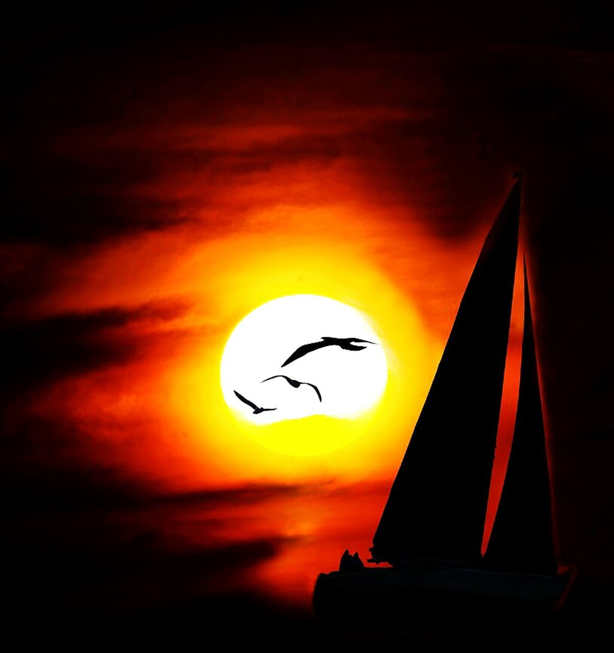 sunset, orange color, sun, silhouette, sky, cloud - sky, moon, nature, beauty in nature, no people, outdoors, astronomy