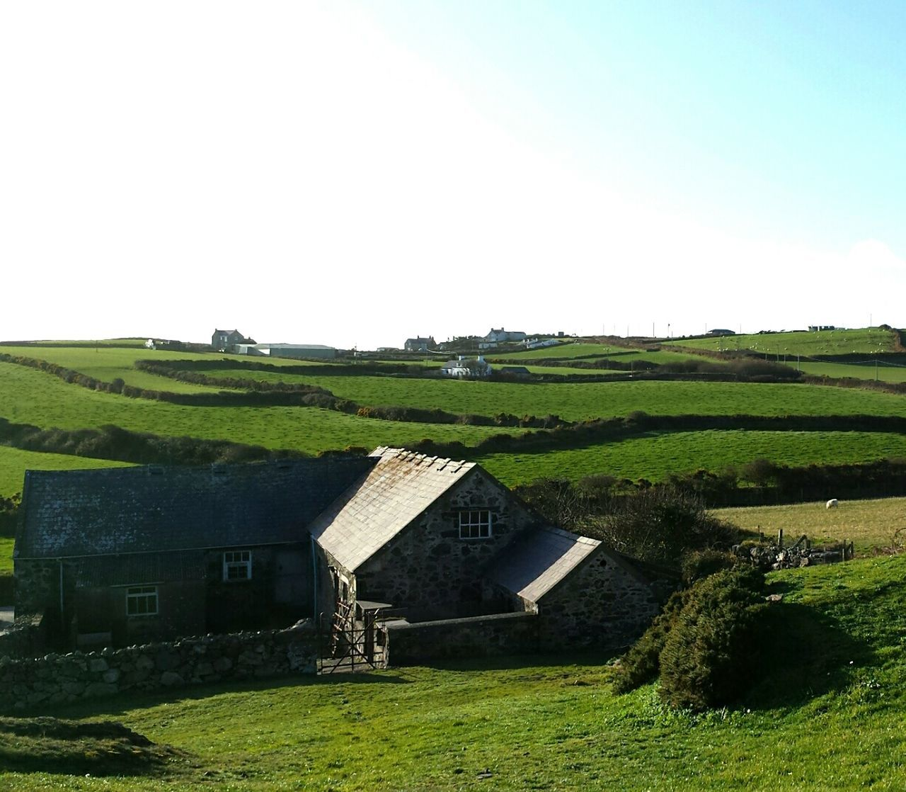 Farmhouse Rural Scene Agriculture Cottage Non-urban Scene Grass Farm Field Architecture Sky Green Nature Rural House North Wales Always Green
