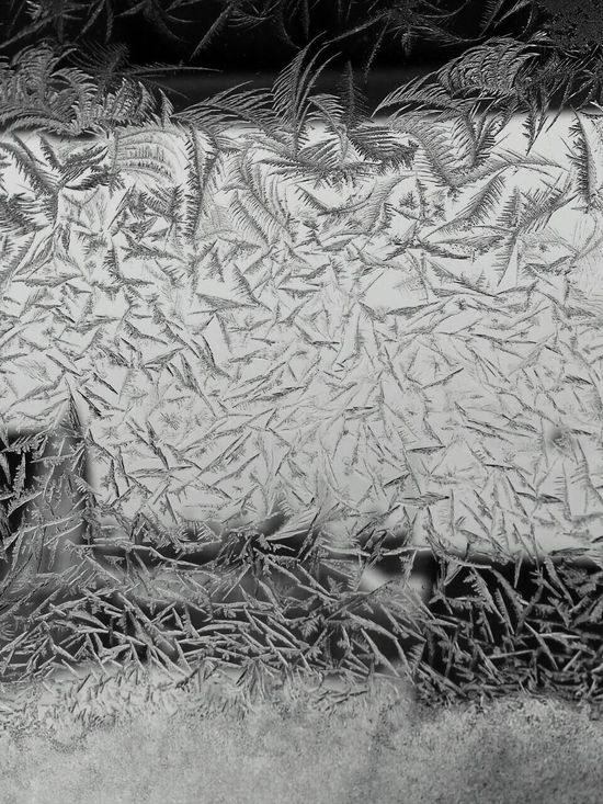 Frost Pattern Winter Winter_collection Winter Window Frosty Window Pattern Pieces PhonePhotographyBackgrounds Close-up Beauty EyeEm Nature Lover Phone Photography Window View Cold Temperature Nature Beauty In Nature Winter Morning Belarus