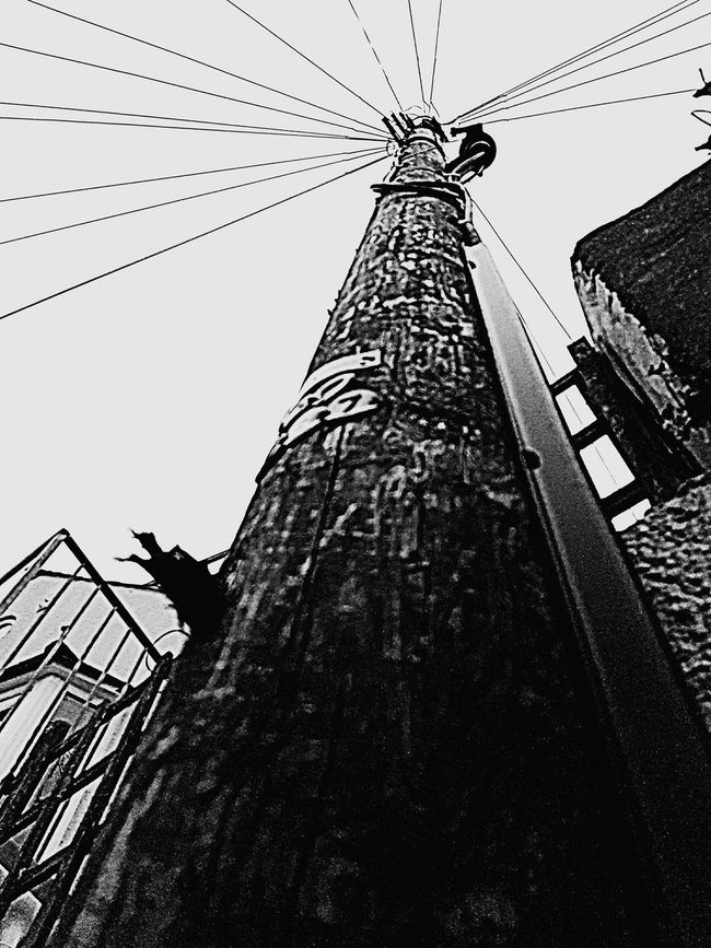 Weymouth Dorset Telephone Pole Telephone Exchange Not Serious But Like Wires And Cables Man Made Structure No People Things We Take For Granted Communication Towering Skywards Forboding A Long Way To The Top Out And About Randomshot Closeupshot Wood - Material