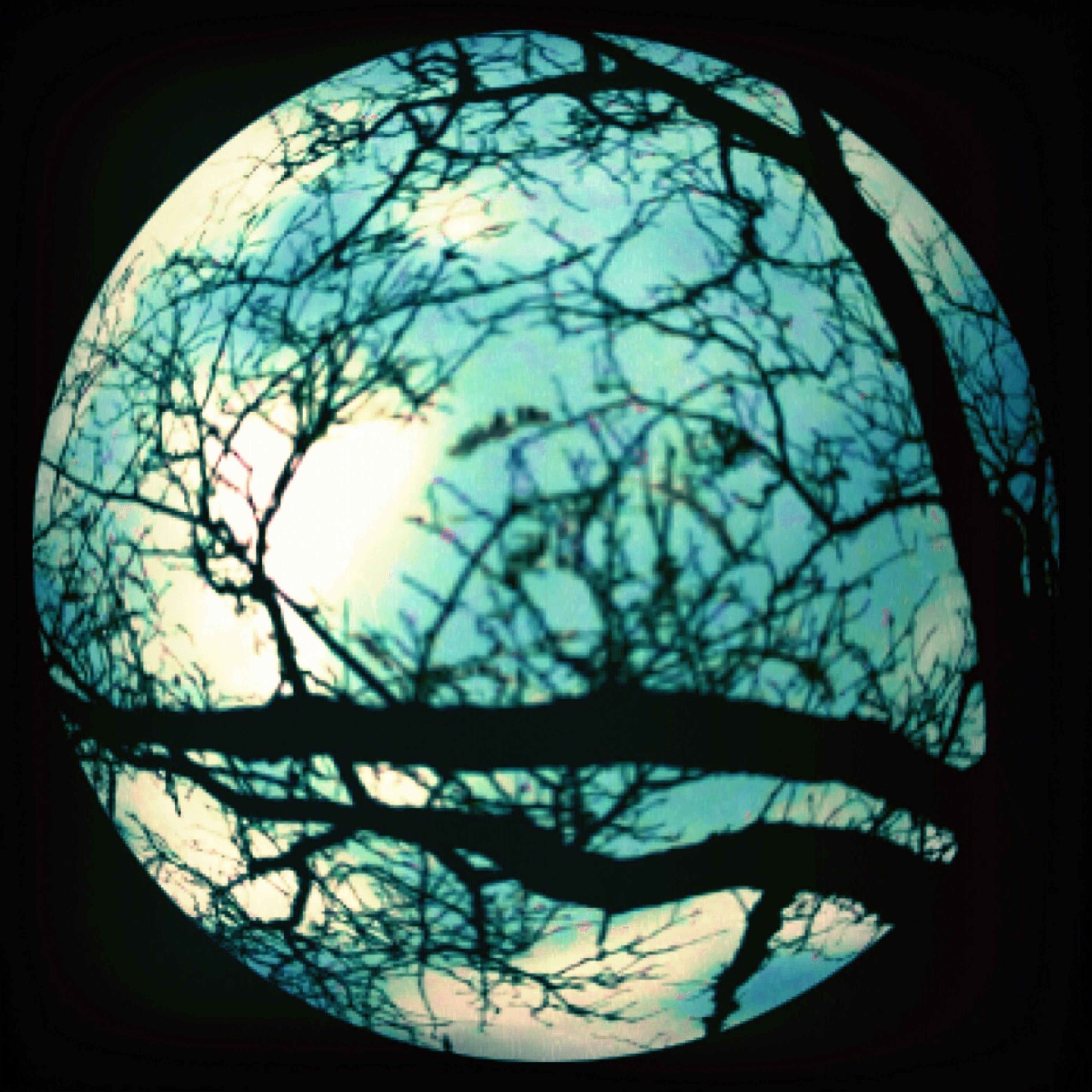 silhouette, sky, indoors, cloud - sky, sunset, window, low angle view, bare tree, circle, glass - material, transparent, tree, nature, sun, dusk, no people, tranquility, close-up, cloud, reflection