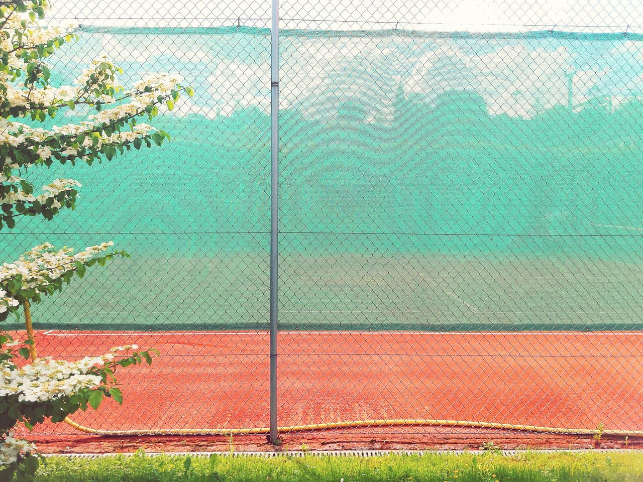 Outside Red Sand Tenniscourt Outdoor Pictures Hanging Out Spring Blossoms Frontal Shot Green Net Viewprotection Viewpoint Tree Branches Urban Nature Urban Silhouettes Urban Outlines City Conture Urban Spring Fever